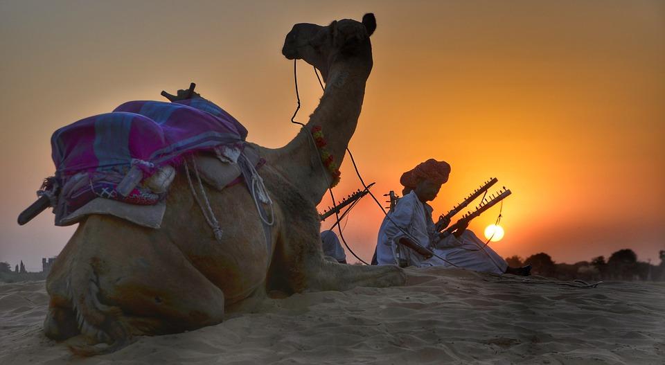 Ranthambore Park, India- safari destinations